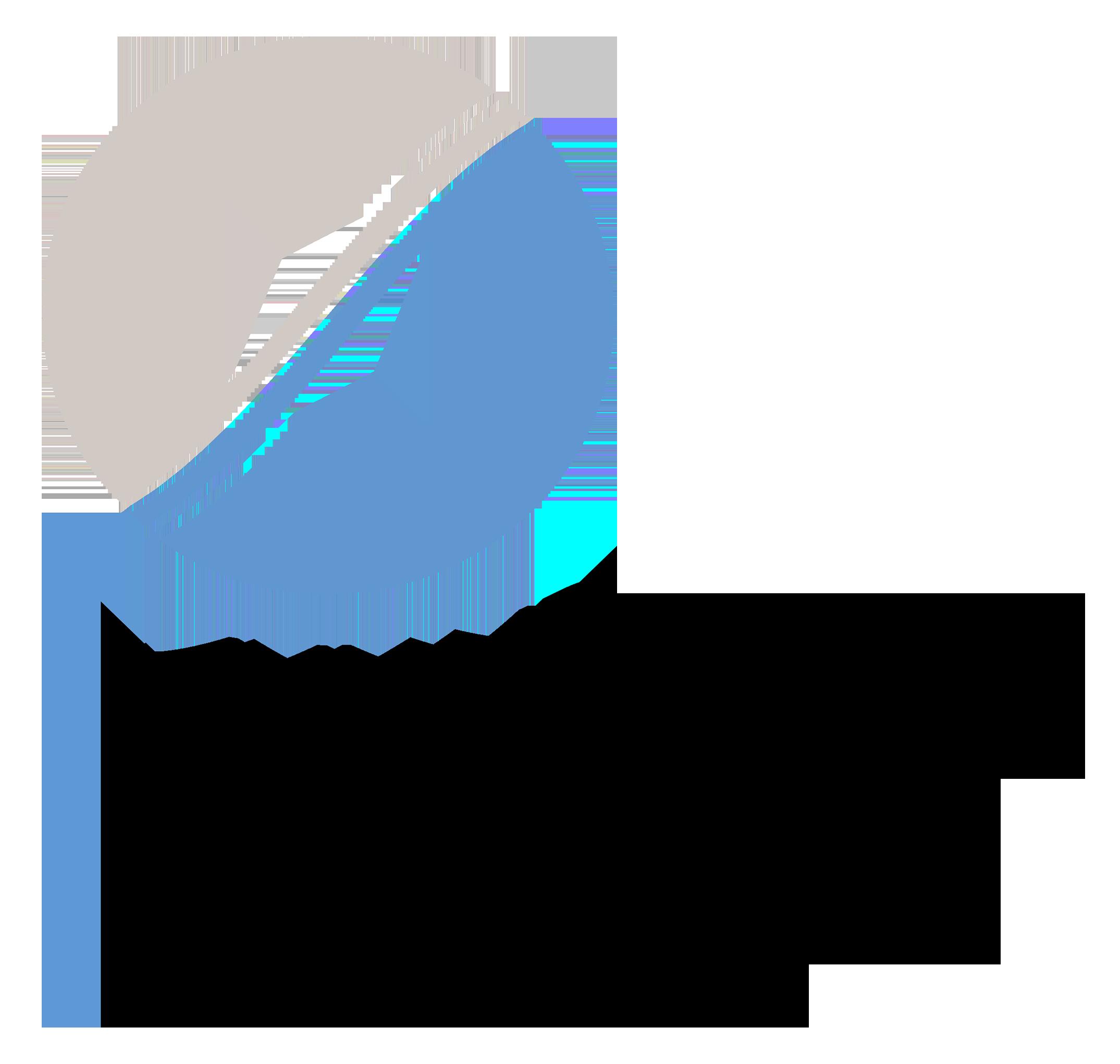 IRAS logo-v1